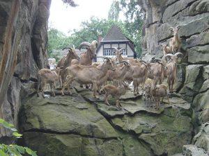 Kebun binatang Negara