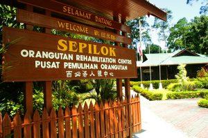 Pusat Rehabilitasi Orangutan Sepilok