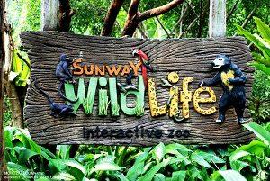 Sunway-Wildlife-Zoo