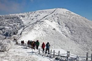 Gunung-Sobaek
