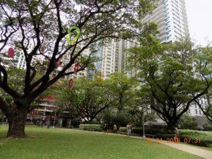 Taman Jaime C. Velasquez