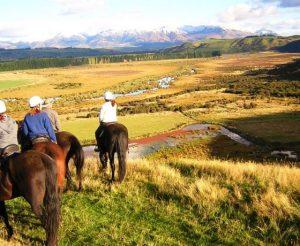 Fiordland-horse-treks-westray-farm-Te-Anau-560x460