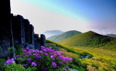7 Tips Jalan-Jalan ke Gwangju Korea Yang Wajib Diketahui