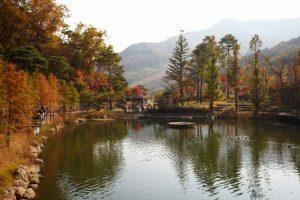 Hwadam Botanic Garden