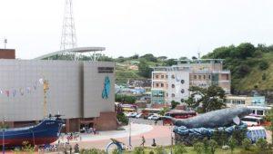 Jangsaepo-Whale
