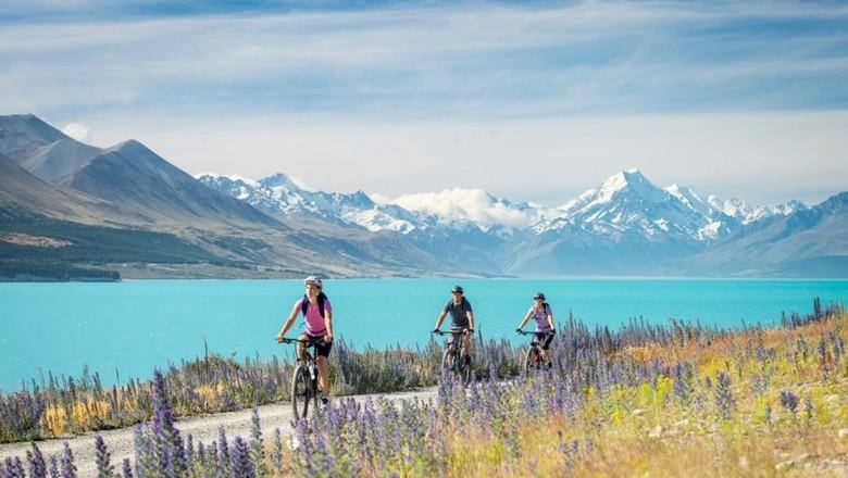 5 Tips Liburan ke New Zealand  Yang Paling Berguna