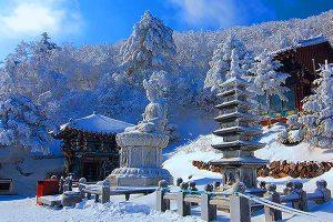 Taebaeksan Mountain Snow Festival