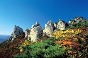 Taman Nasional Bukhasan