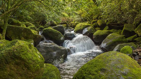 10 Tempat Wisata Di Matamata Selandia Baru Paling Mempesona