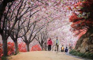 wansan-park