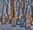 11 Tempat Wisata Di Malbork Polandia yang Terkenal