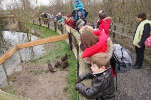 De-Zonnegloed-Animal-Sanctuary-vzw