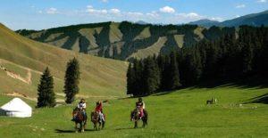 Sothern-pasture