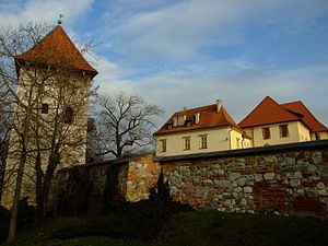 Zupny Castle