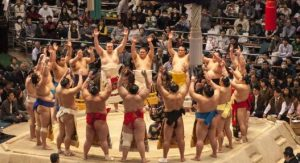 sumo spring