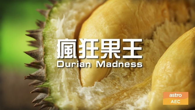 Durian Madness