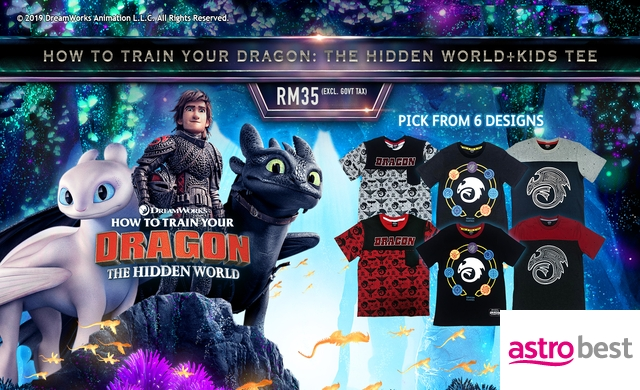 HOW TO TRAIN YOUR DRAGON 3 + KIDS TEE
