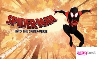 SPIDER-MAN:INTO THE SPIDER-VERSE BUNDLE