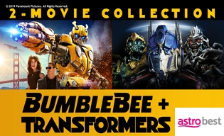 BUMBLEBEE AND TRANSFORMERS