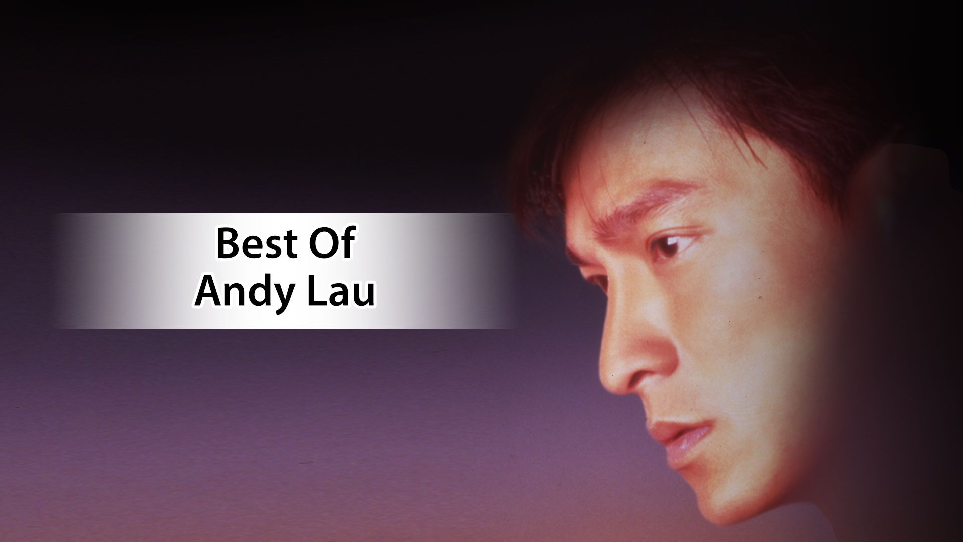 BEST OF ANDY LAU