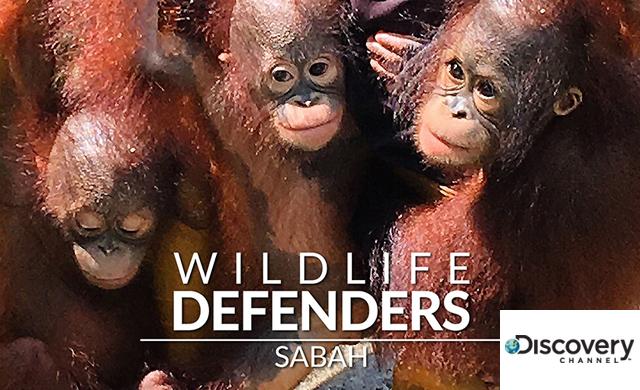 WILDLIFE DEFENDERS: SABAH