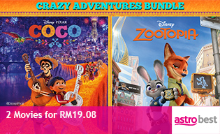 ZOOTOPIA & COCO CRAZY ADVENTURES BUNDLE