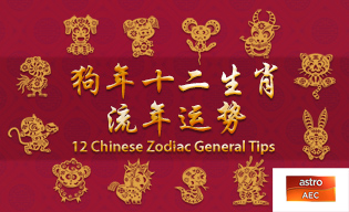 12 CHINESE ZODIAC GENERAL TIPS
