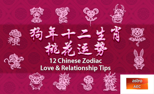 12 CHINESE ZODIAC LOVE & RELATIONSHIPS