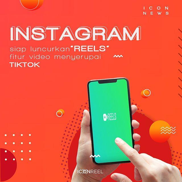 @iconreel Instagram Analytics