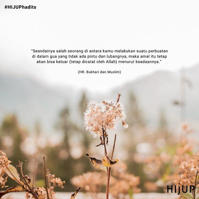 @hijup Instagram Analytics