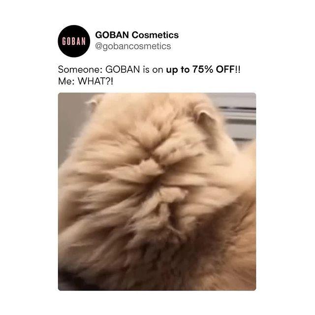 @gobancosmetics Instagram Analytics