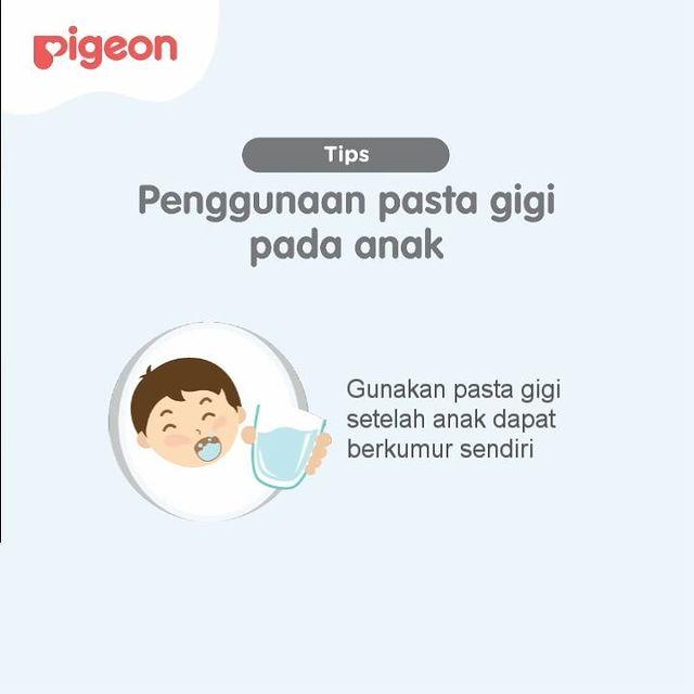 @pigeon_baby_indonesia Instagram Analytics