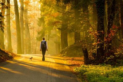 Thumb walking as meditation