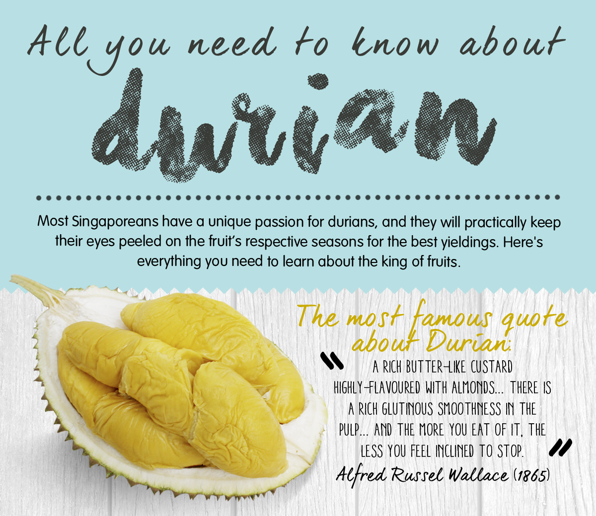 All you need to know about durian