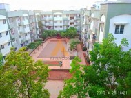 Dwarka Sector 1A Co-Opertive Housing society Ltd. Classifieds