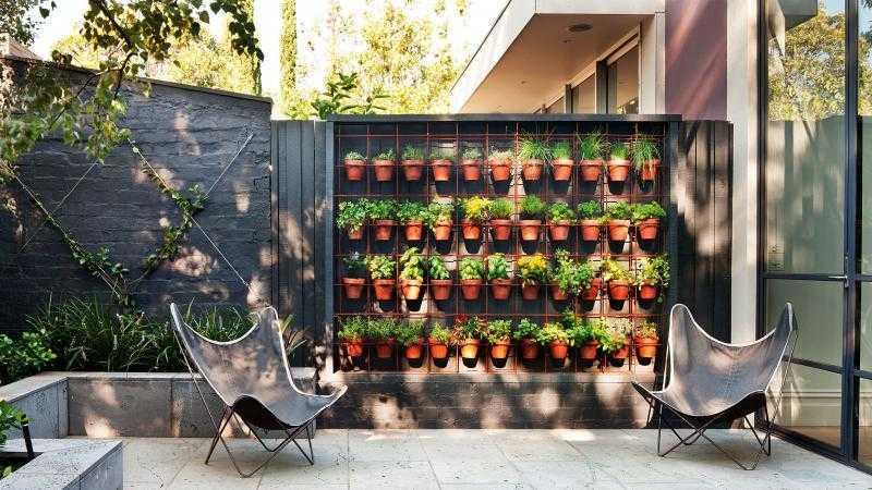 Contoh vertical garden (Sumber: www.insideout.com.au)