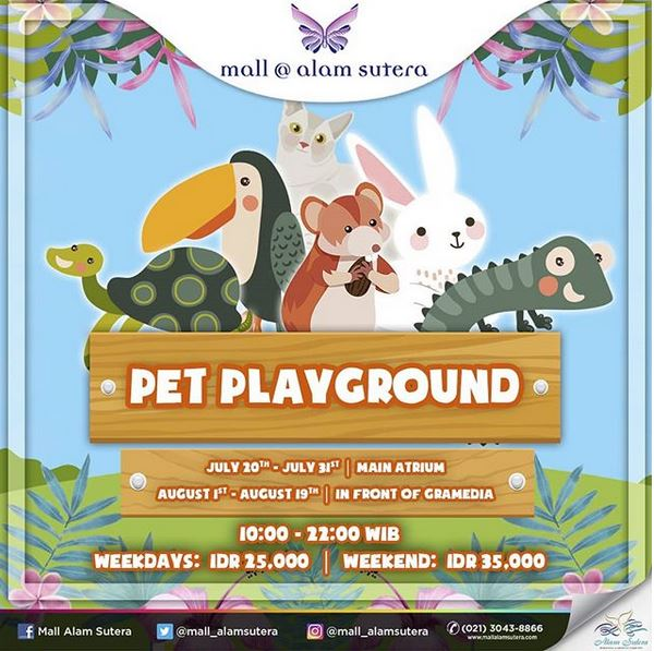 Event pet playground at mall alam sutera mall alam sutera event pet playground at mall alam sutera thecheapjerseys Image collections