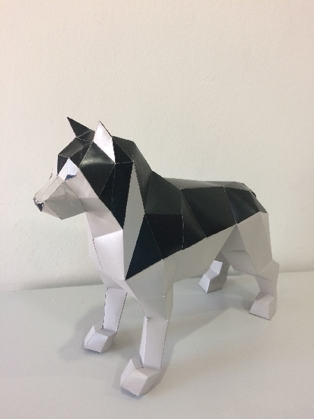 Paper craft - siberian husky grey
