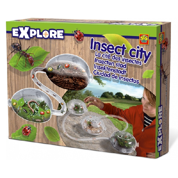 Explore insect city