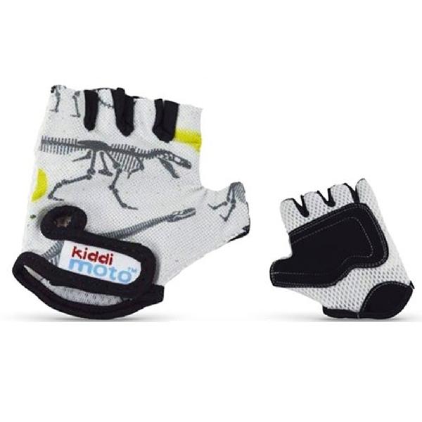 Glove fossil