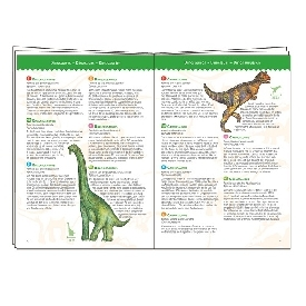 Dinosaurs puzzles & booklet