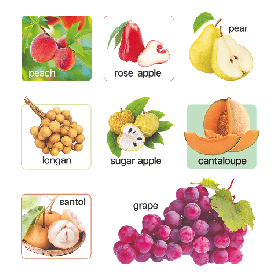 Board book 100 first fruits & vegetable