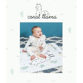 ผ้ารองกันเปื้อน - colar lama