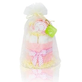 ชุดของขวัญเด็กแรกเกิด diaper cake - girl (s)