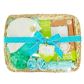 Baby gift basket - boy (s)