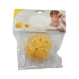 Honeycomb sponge