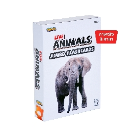 Jumbo Flash card – Live Animals