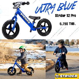 Strider 12 pro ultra blue