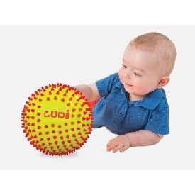 ลูกบอล 2 สี พัฒนาประสาทสัมผัส
