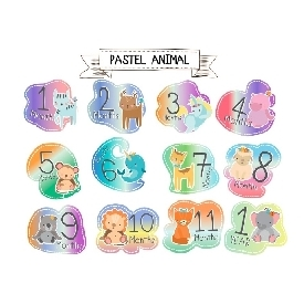 Baby bodysuits set 12 - pastel animal